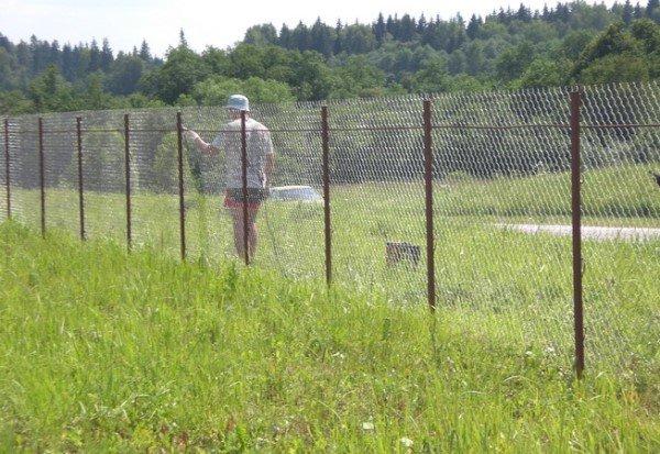 Забор на даче из сетки рабицы