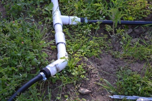 Системы молива огорода