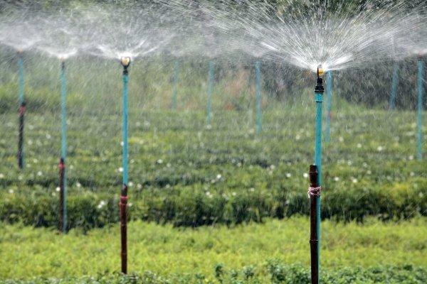 Вертушки для полива огорода