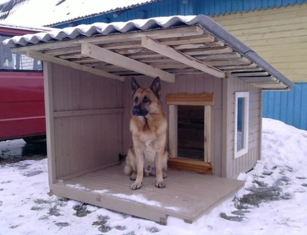 Будка для собаки алабая своими руками