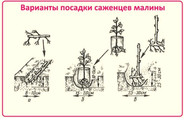 Новогодние открытки скрапбукинг шаблоны 42